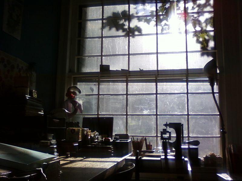 Nan's office 10.11.09 021