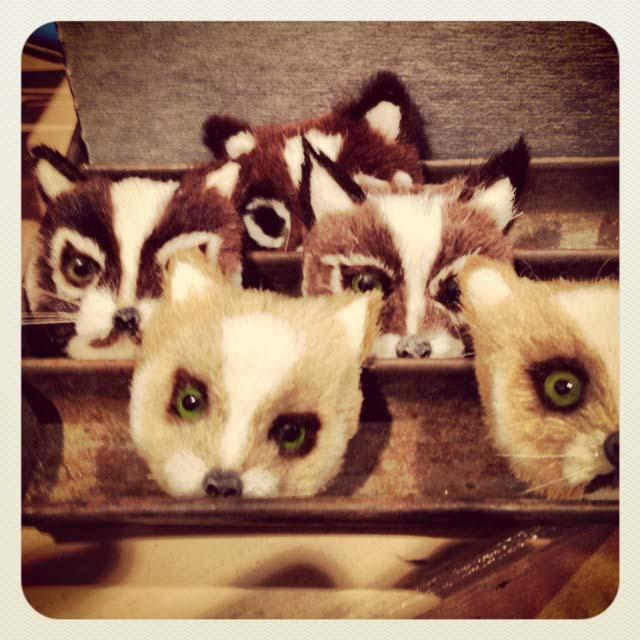 Catheads